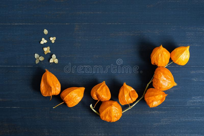 Composition of dried flowers on a blue wooden background. Buds of orange physalis on a wooden table. stock photos