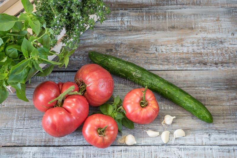 Composition en aliment biologique avec le cucucmber, l'ail et le basi de tomates image stock