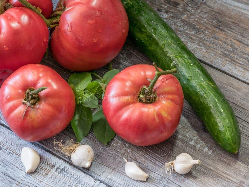 Composition en aliment biologique avec le cucucmber, l'ail et le basi de tomates photo libre de droits