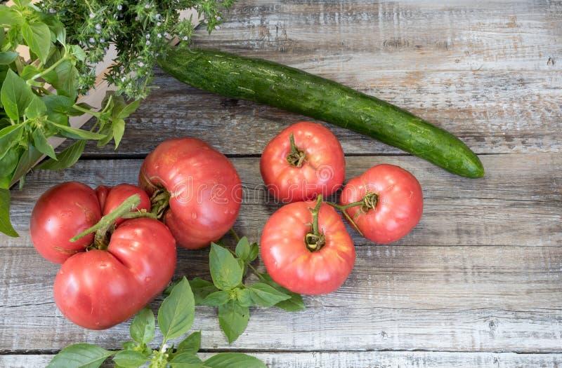 Composition en aliment biologique avec le cucucmber, l'ail et le basi de tomates images libres de droits