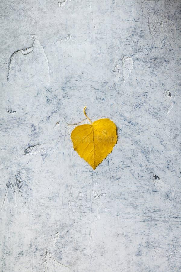 Composition en automne faite de feuille sèche sur le fond concret photo stock