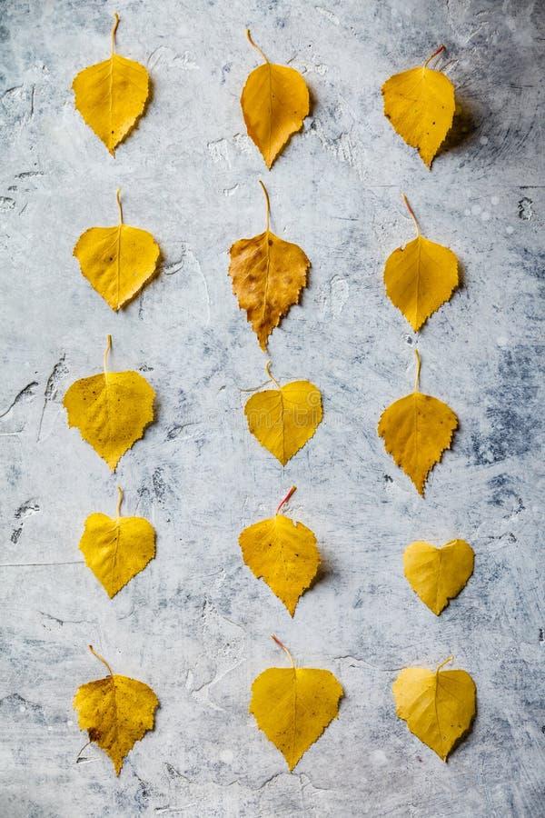 Composition en automne faite de feuilles sèches photos libres de droits