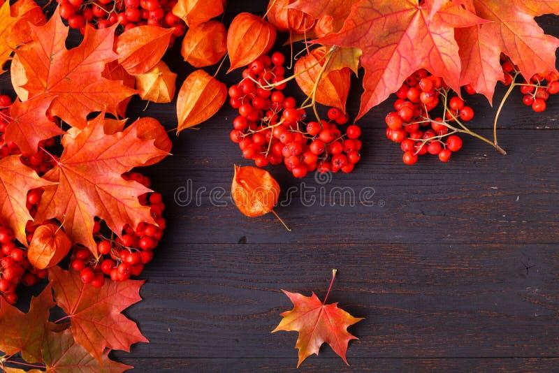 Composition en cadre d'automne avec les feuilles tombées sur en bois avec l'espace de copie pour le texte Thanksgiving, Halloween image stock
