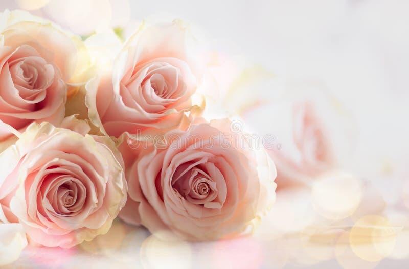 Composition en fleur avec les roses en pastel pour des vacances photographie stock