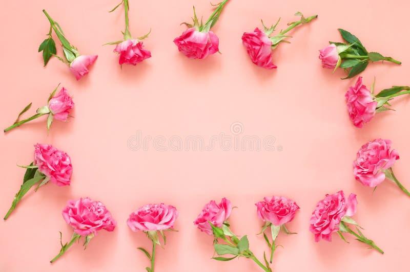 Composition en fleurs de Rose sur le fond rose photos stock