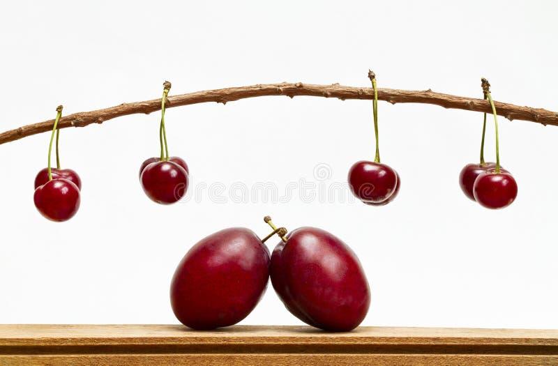Composition en fruit images libres de droits