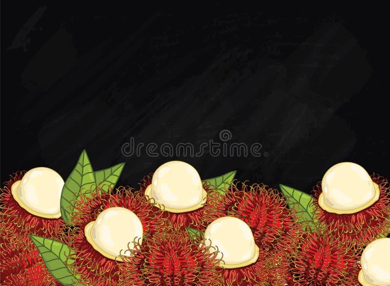 Composition en fruit de ramboutan sur le tableau, vecteur illustration de vecteur