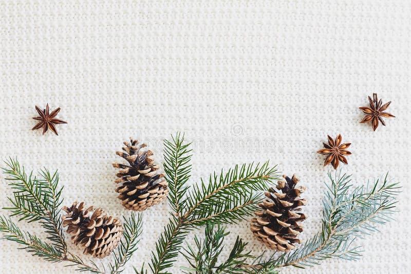 Composition en Noël et en nouvelle année Le sapin s'embranche avec les cônes, anis d'étoile sur le fond blanc tricoté images libres de droits