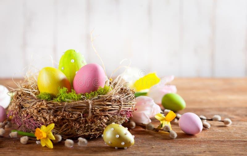 Composition en Pâques avec des oeufs de pâques dans le nid, les fleurs de ressort et les branches des saules de chat photos stock