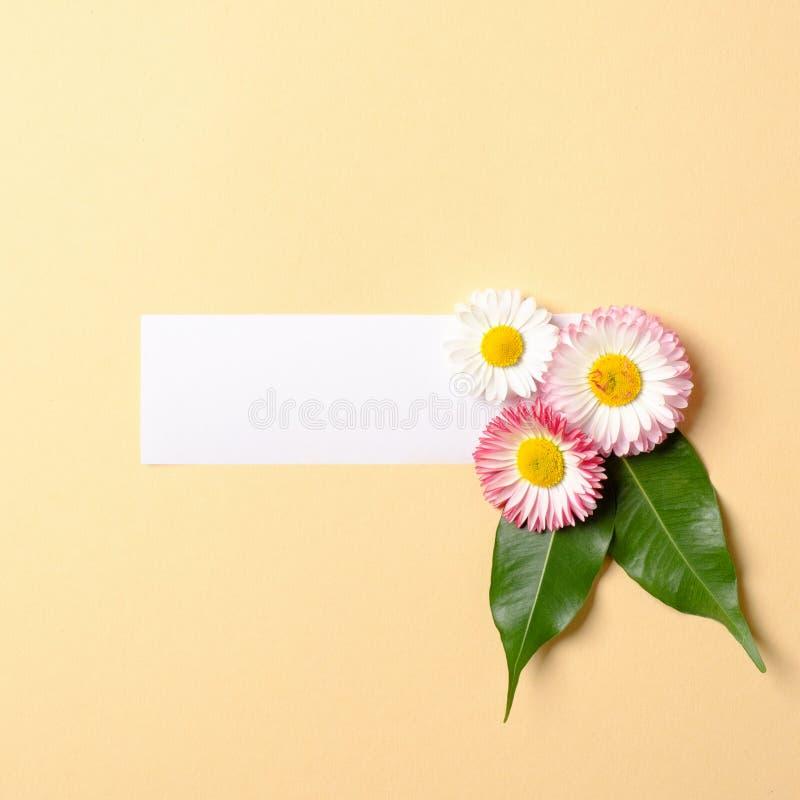 Composition en ressort faite avec les fleurs color?es avec les feuilles vertes et le label de papier blanc sur le fond jaune en p image libre de droits