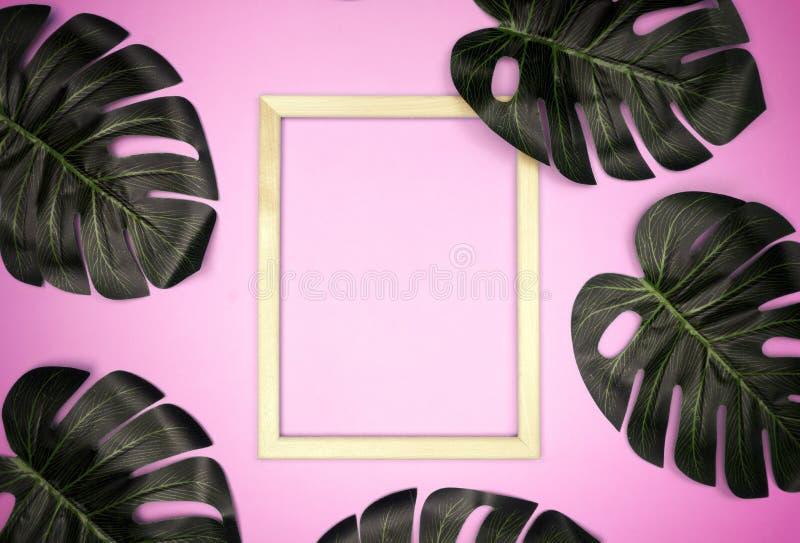 Composition en ?t? avec des feuilles de monstera Feuilles tropicales, cadre vide de photo sur le fond rose en pastel images libres de droits