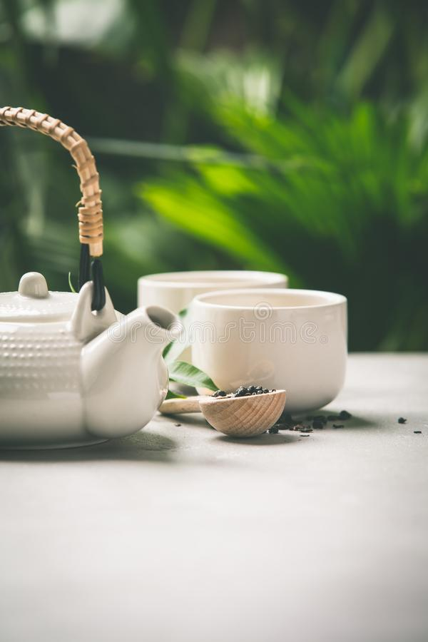 Composition en thé sur le fond tropical de feuilles photo libre de droits