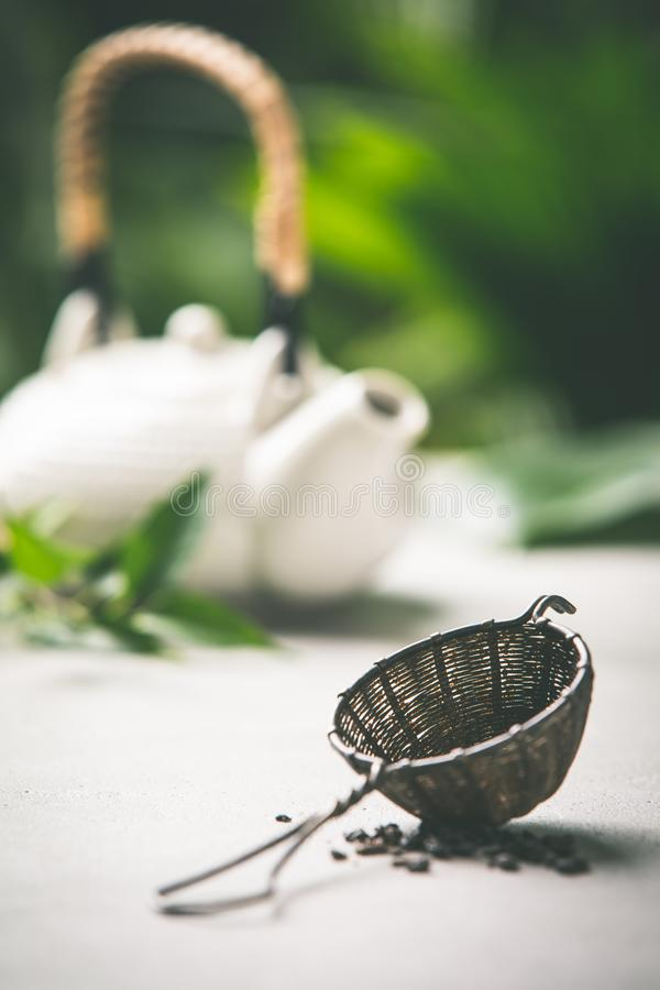 Composition en thé sur le fond tropical de feuilles photo stock