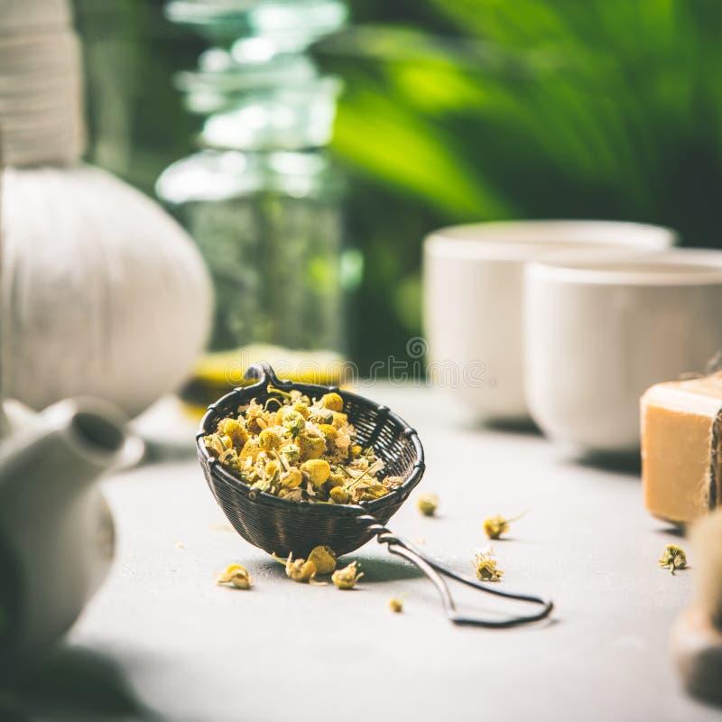 Composition en thé sur le fond tropical de feuilles photos stock