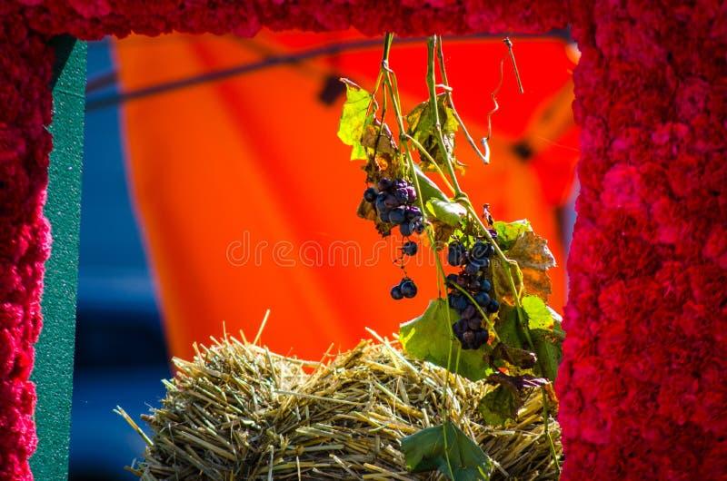 Composition florale avec le rose vert et pourpre colorés photo stock