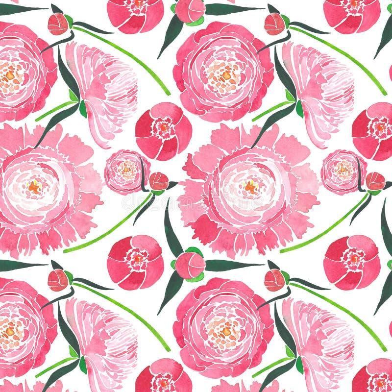 Composition florale de fines herbes tendre élégante merveilleuse de pivoines roses avec les feuilles de vert et le modèle rouge d illustration stock