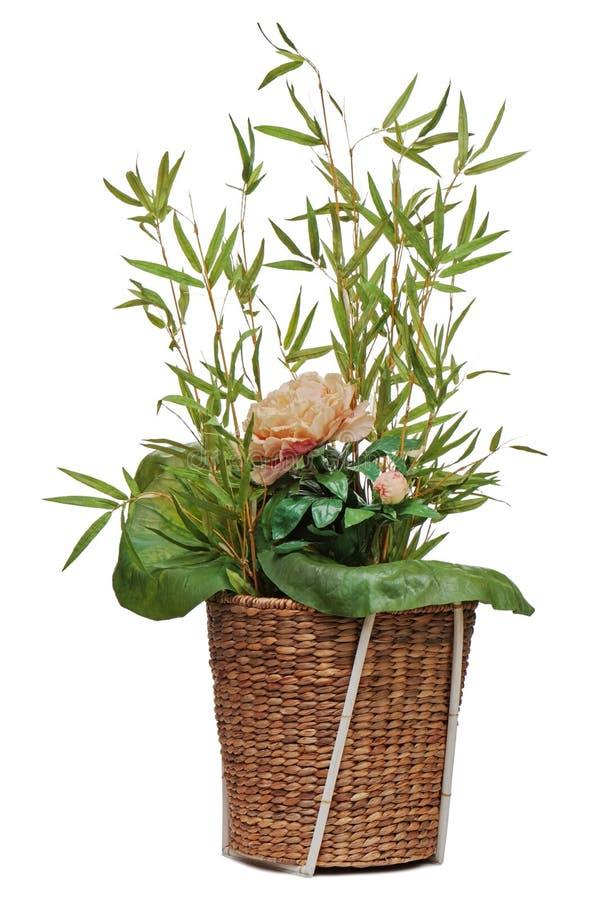 Composition florale de fleur de péon, feuille de lotus et brindilles de bambo image stock