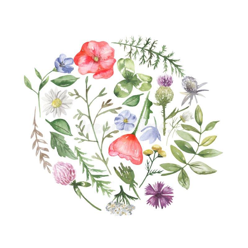 Composition florale sous forme de cercle et un coeur des wildflowers illustration libre de droits