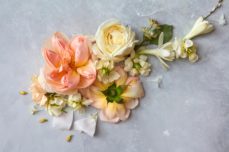 Composition of flowers on grey background stock images