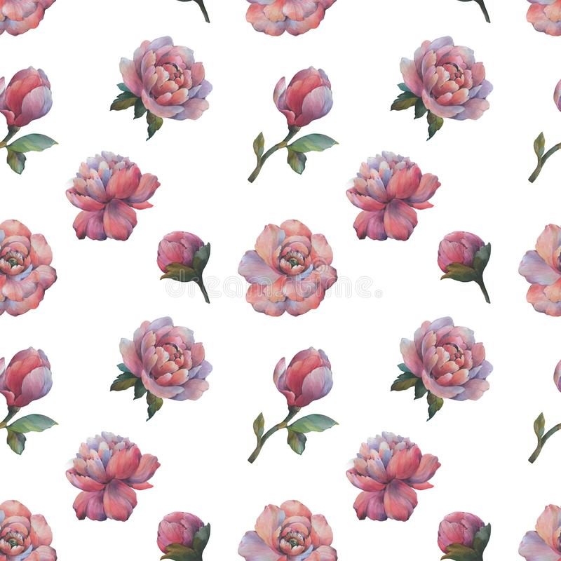 The composition of the flowers of peony. Seamless watercolor pattern of flowers. Botanical pattern. Watercolor peonies. stock illustration