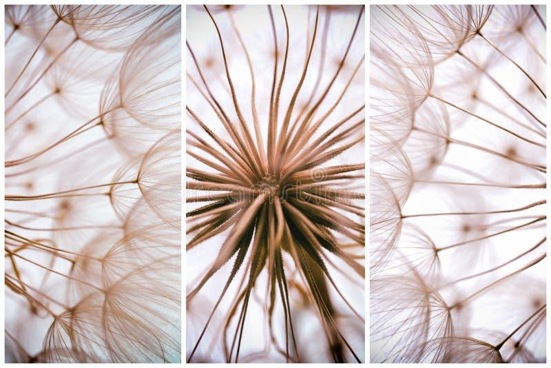 Composition - fond d'abrégé sur aquarelle de vintage - monochrom images libres de droits