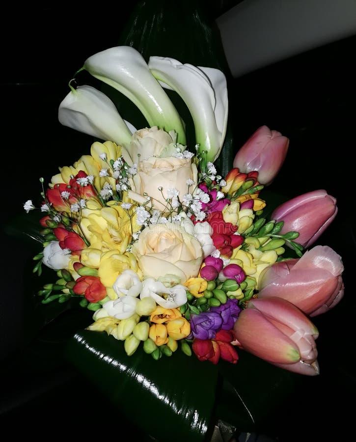Bouquet Sposa Enzo Miccio.Sposa Stock Photos Download 367 Royalty Free Photos