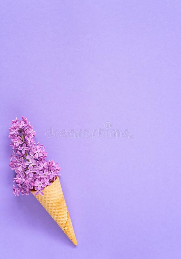 Composition of ice cream cone with purple lilac flowers on a violet background stock photo