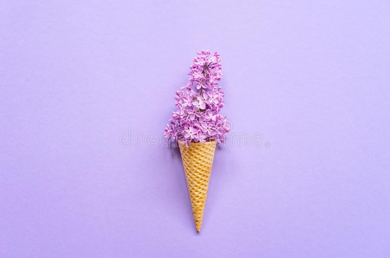 Composition of ice cream cone with purple lilac flowers on a violet background stock photography