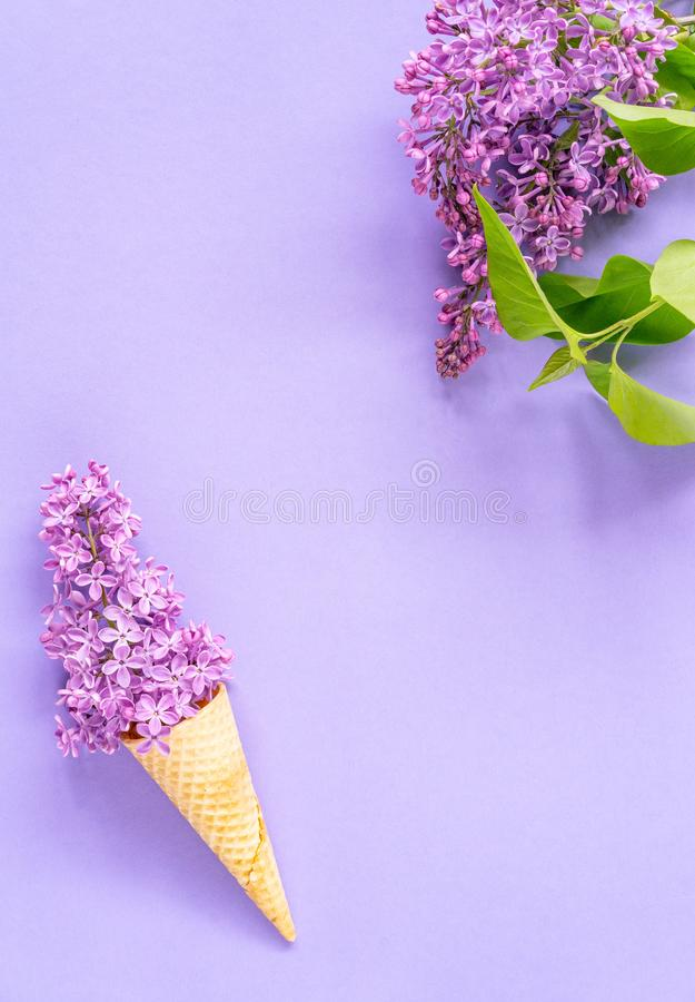 Composition of ice cream cone with purple lilac flowers on a violet background royalty free stock images