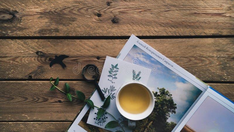 Composition intéressante de la belle carte postale, du livre des peintures, de la tasse de thé et de la loupe décorée des herbes images stock