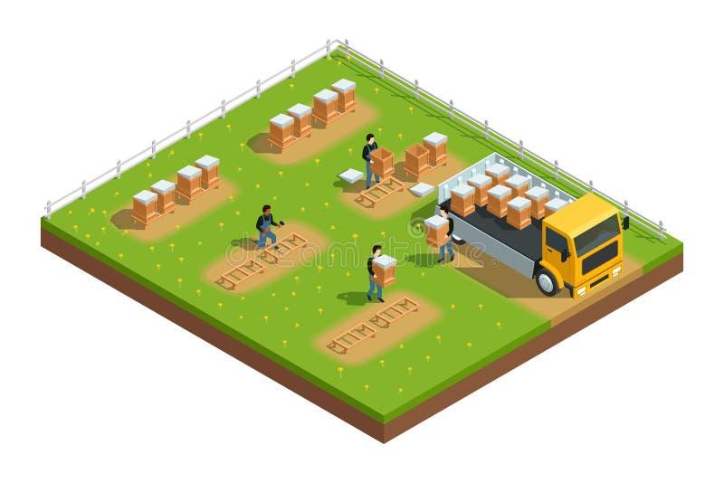 Composition isométrique en rucher de l'apiculture illustration stock