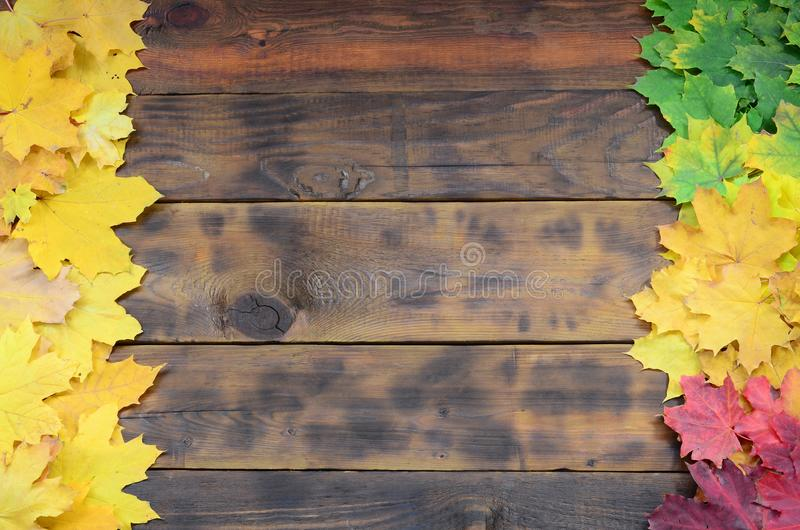 Composition of many yellowing fallen autumn leaves on a background surface of natural wooden boards of dark brown colo. R royalty free stock image