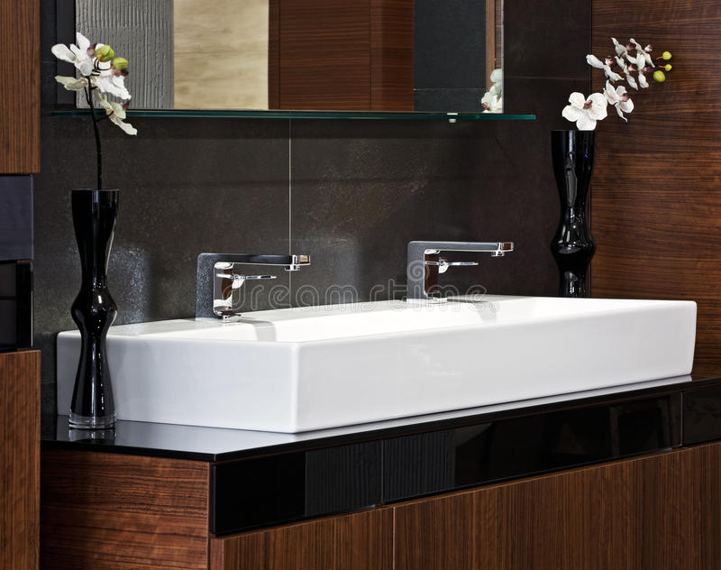 Composition in modern bathroom interior. Composition with chrome faucets, sink for two and flowers in modern luxury bathroom interior stock image