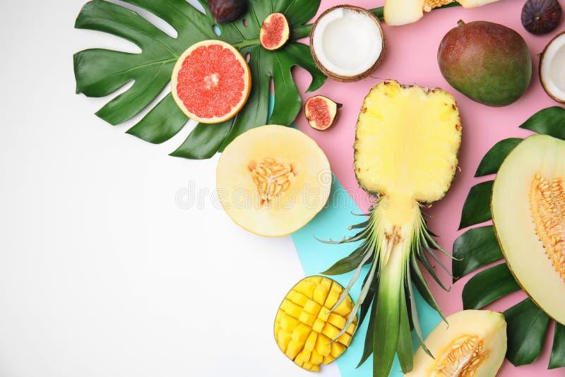 Composition plate en configuration avec le melon, d'autres fruits photos stock