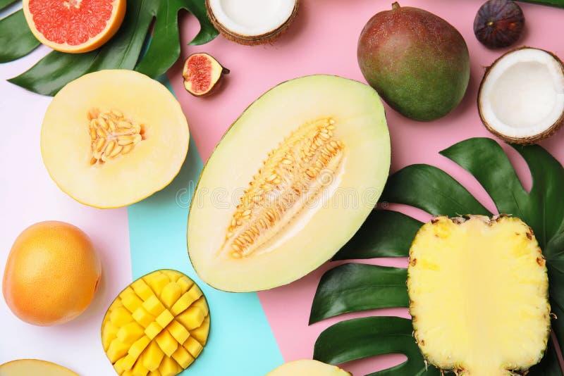 Composition plate en configuration avec le melon et d'autres fruits photos libres de droits
