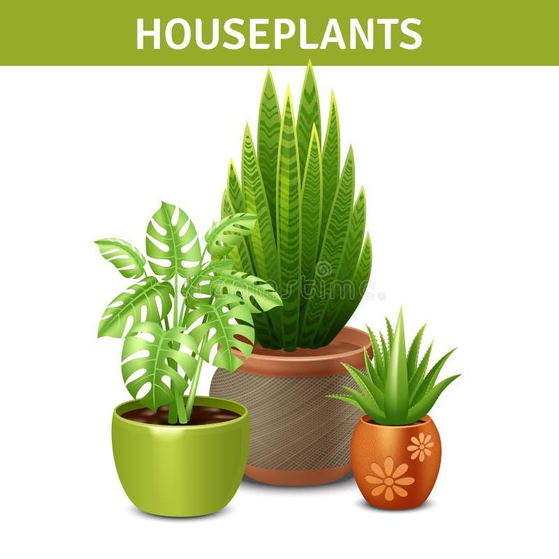 Composition réaliste en plantes d'intérieur illustration libre de droits
