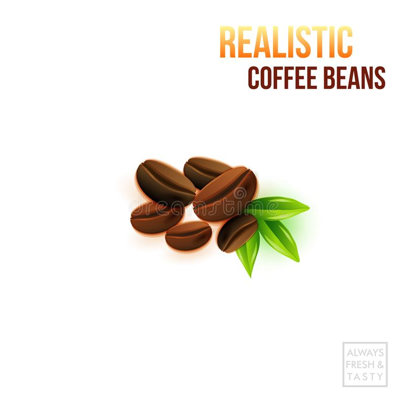 Vector illustration of realistic coffee beans and green leafs on a white background. vector illustration