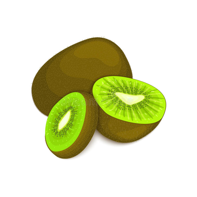 Composition of several kiwi. Ripe vector kiwifruits whole and slice appetizing looking. Group tasty fruits colorful royalty free illustration