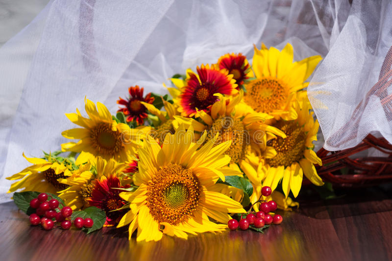 Composition with sunflowers, daisies and red viburnum stock photo