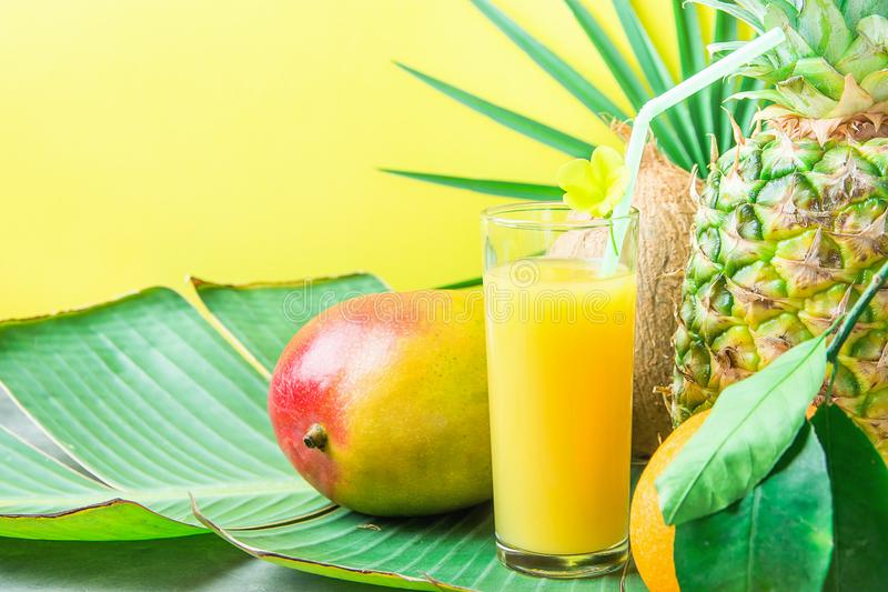 Composition Tall Glass with Freshly Squeezed Tropical Fruit Juice with Straw Pineapple Coconut Mango Orange on Large Palm Leaf royalty free stock photography