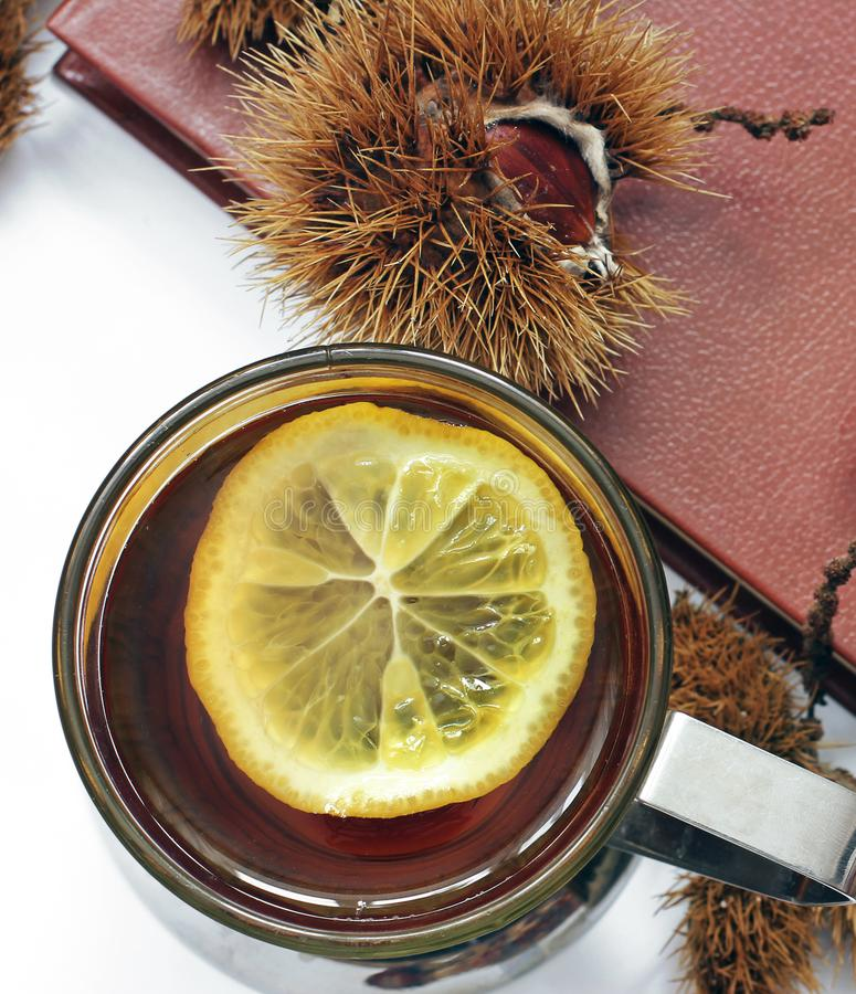 Composition. Tea with lemon, a closed book, glasses and chestnuts royalty free stock photography