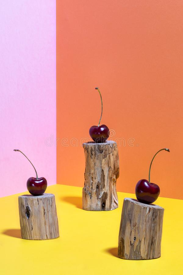 Composition of three cherries on small wooden stumps eaten by bark beetle on bright pink, yellow and orange background. Pop Art.  Minimal colorful still life stock images