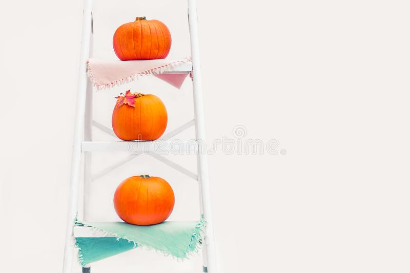 Composition of Three pumpkins with maple leaf on the napkins on stairs on the steps of rung ladder on white background isolated. A royalty free stock photo