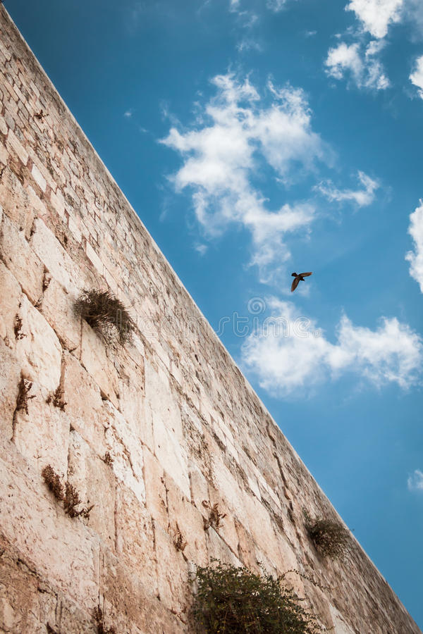 50/50 composition, to show half heaven half earth. Wailing wall with blue sky on the background, and bird in the sky. Jerusalem stock images