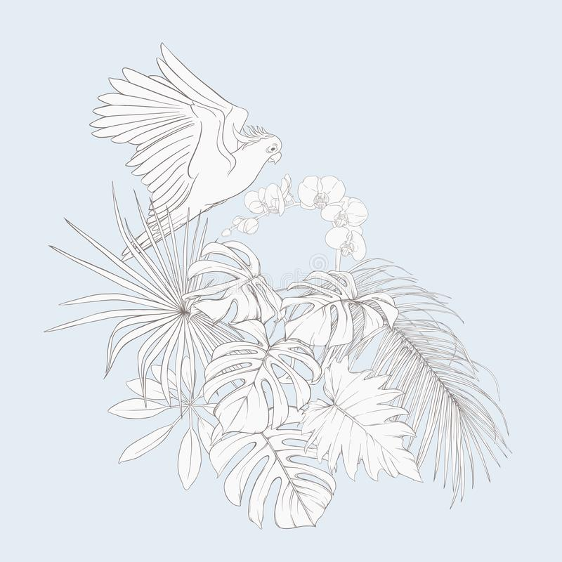 A composition of tropical plants, palm leaves. Monsters and white orchids with cockatoo parrot In botanical style. Outline hand drawing vector illustration. In stock illustration