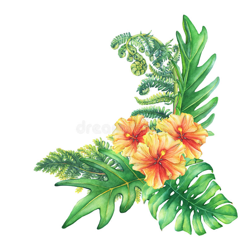 Free Composition With Yellow-red Hibiscus Flowers And Tropical Plants. Royalty Free Stock Image - 89217936