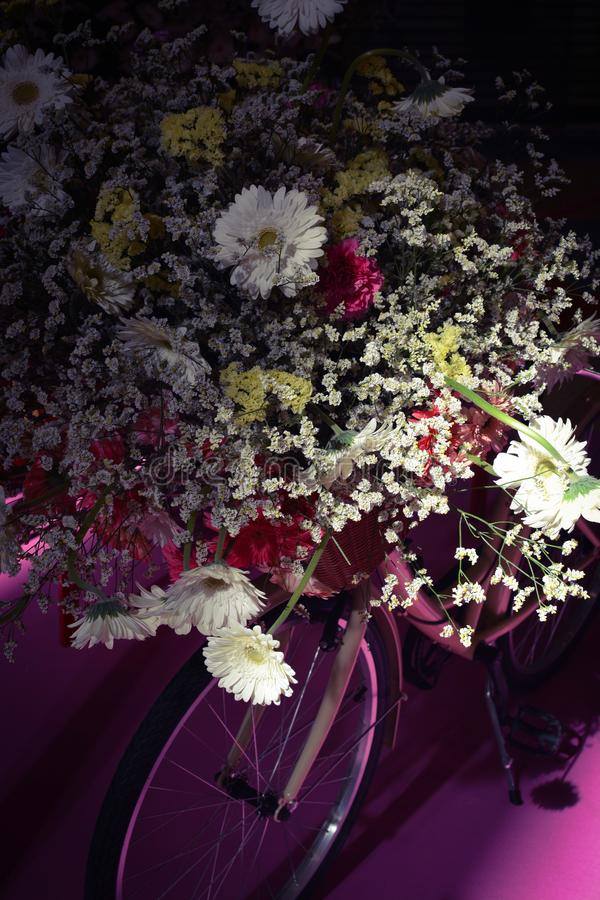 Compositions en Festa DA Flor 2019Flower par Araik Galstyan photo libre de droits