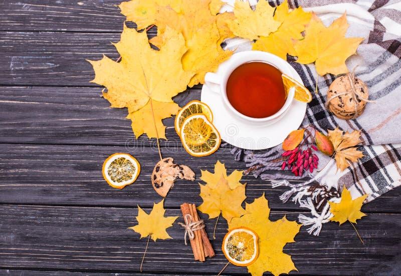 Composizione in autunno con la tazza di tè della frutta, foglie di autunno, bastoni di cannella, stella dell'anice, coni, limone  fotografie stock