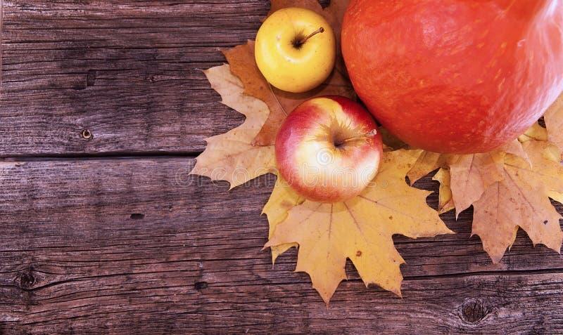Composizione in autunno con la zucca, le foglie di acero gialle e la mela o fotografie stock libere da diritti