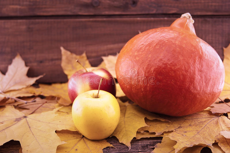 Composizione in autunno con la zucca, le foglie di acero gialle e la mela o fotografie stock
